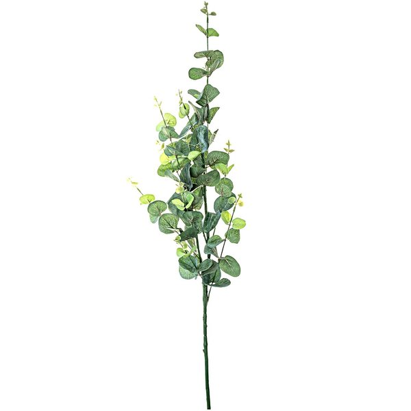 Eukalyptuszweig natur 90cm