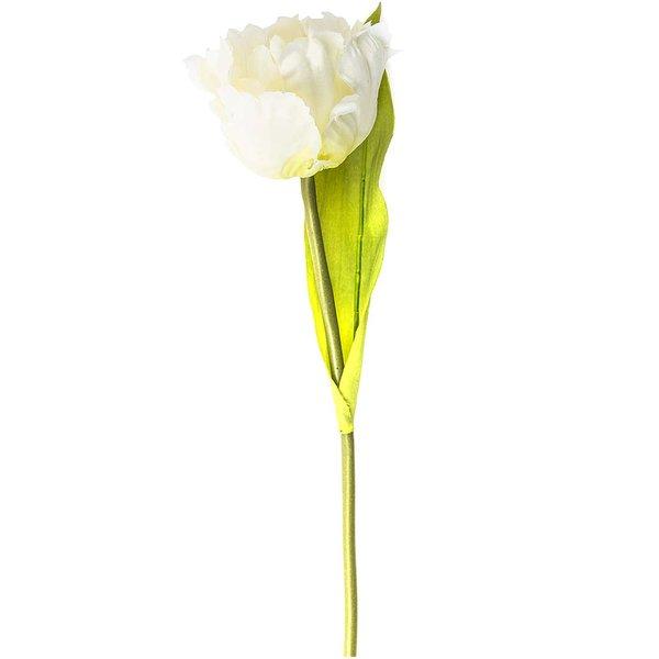 Tulpe weiß 29cm