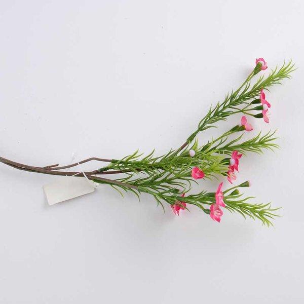 Waxflower pink 38cm