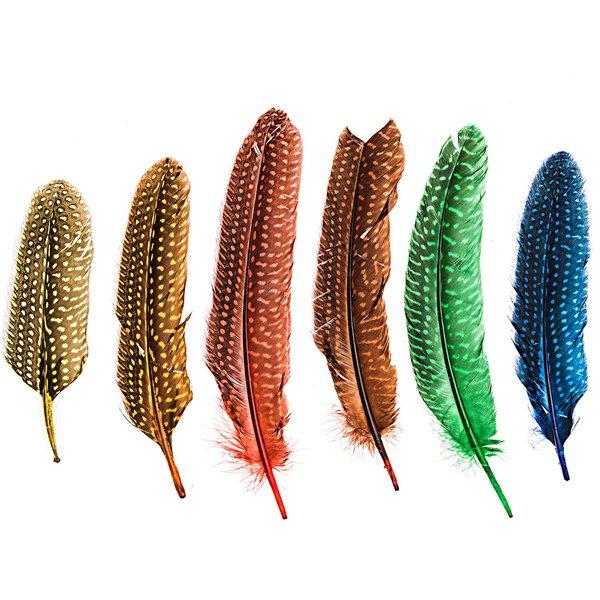 Tupfenfedern mehrfarbig 12 Stück