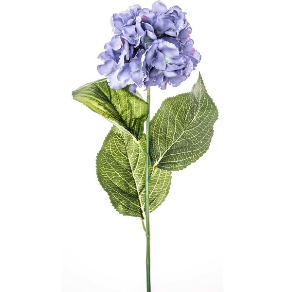 Hortensie blau 72cm