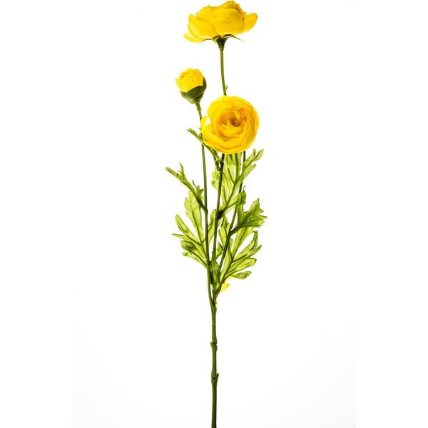 Ranunkel gelb 42cm