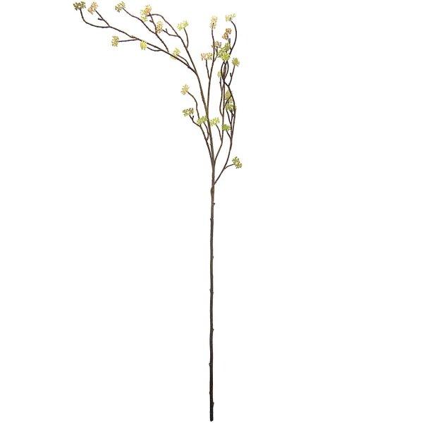 Dekozweig Knospen grün-braun 106cm