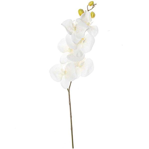 Phalaenopsis mit Glitter weiß 85cm